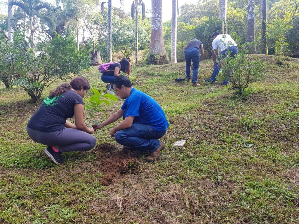 Efectúan campaña de reforestación en el Parque del Café