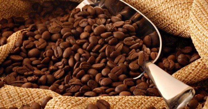 Chiapas dejará de recibir hasta 100 mdd por baja de precios del café