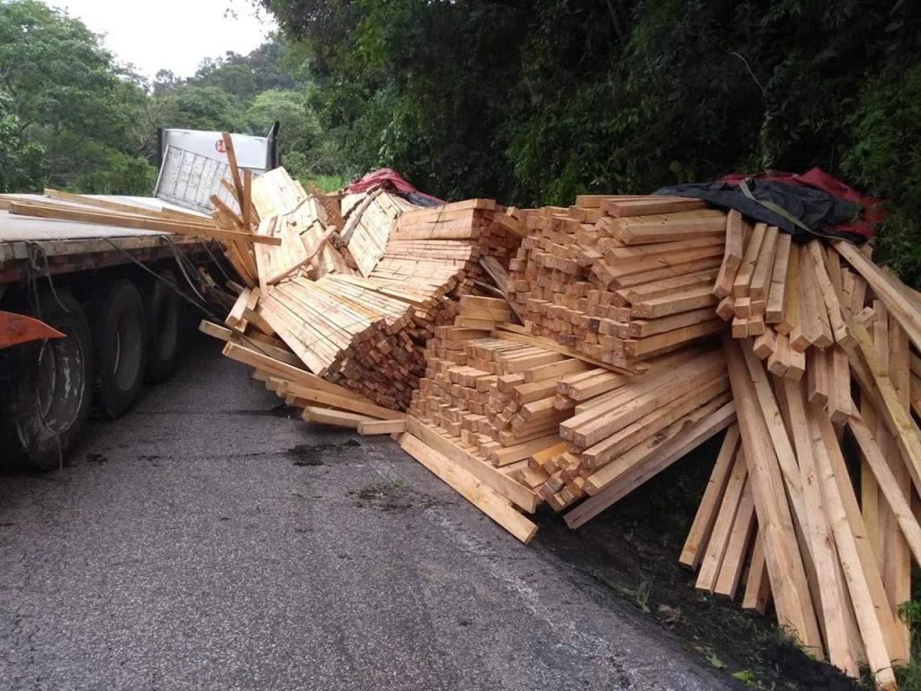 Continúa el ecocidio en la Selva Lacandona de Ocosingo