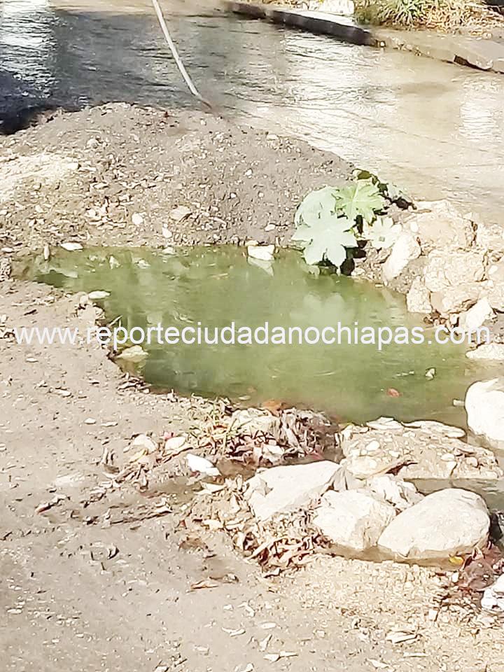 Vecinos de la colonia Los Pájaros denuncian graves problemas de aguas negras