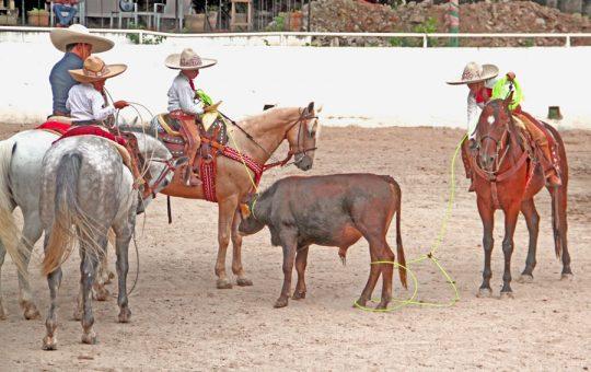 Indeporte respaldó la participación de Chiapas en el Campeonato Nacional Charro